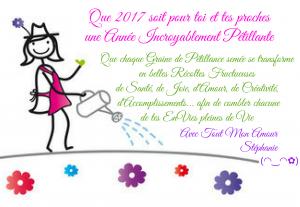 Bonne Année 2017 - L'année de la Pétillance