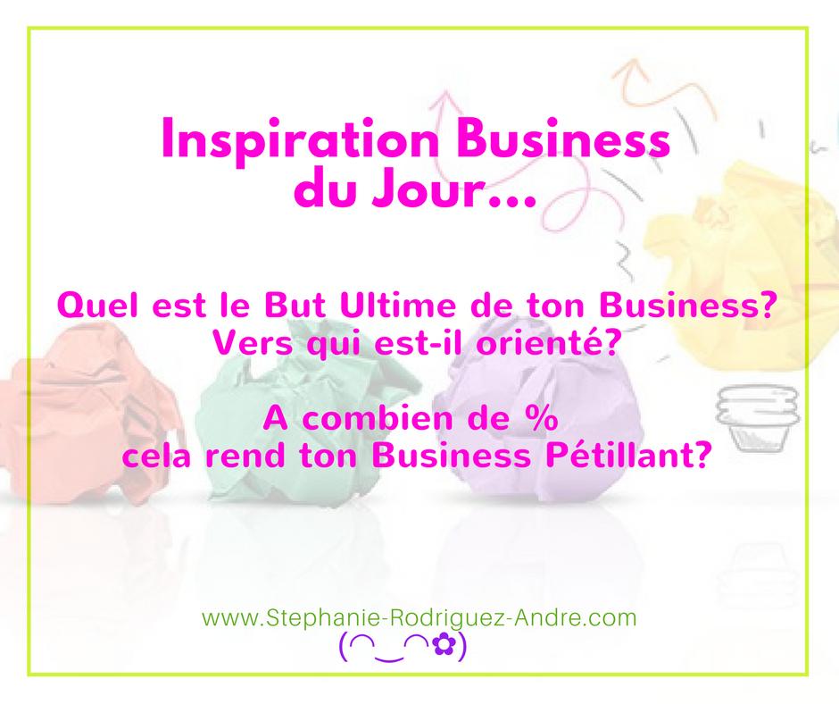 Quel est le But Ultime de ton Business- Vers qui est-il orienté - Stéphanie Rodriguez-André
