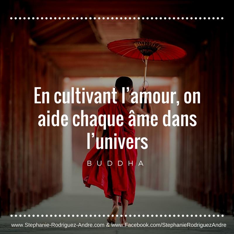 Citation Inspiration Bouddha Pour Entrer Dans Plus D