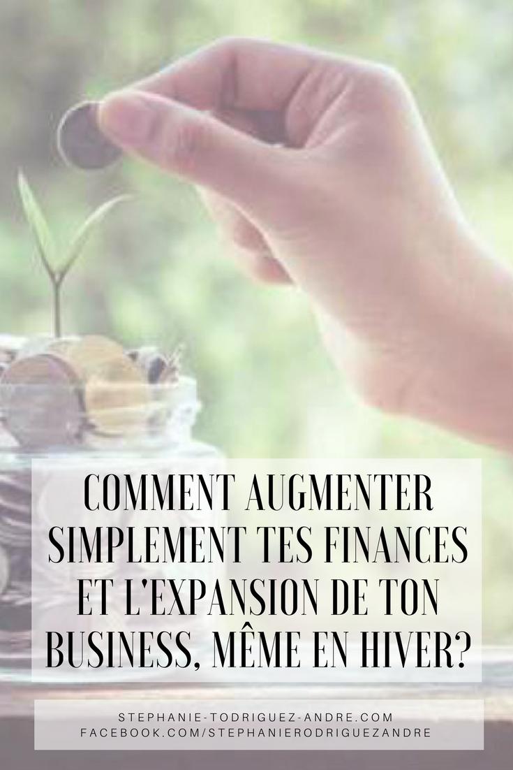 COMMENT AUGMENTER SIMPLEMENT TES FINANCES ET L'EXPANSION DE TON BUSINESS, MÊME EN HIVER_ - Stéphanie Rodriguez-André.com - Web Business Vivratoire - Lodyllion - Pintereste